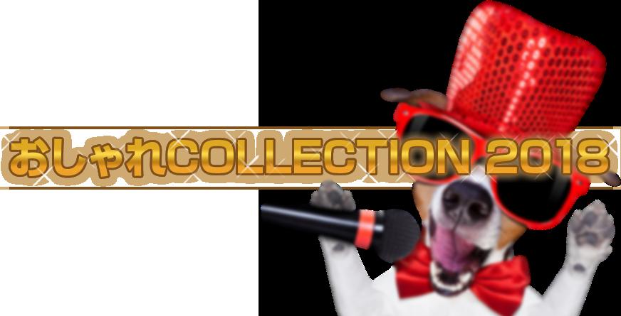 おしゃれコレクション2018
